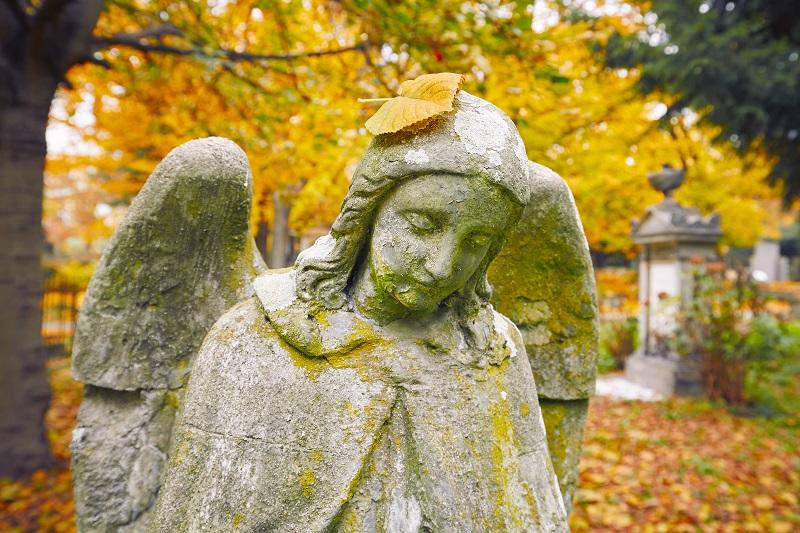 Cmentarz Puszczykowo